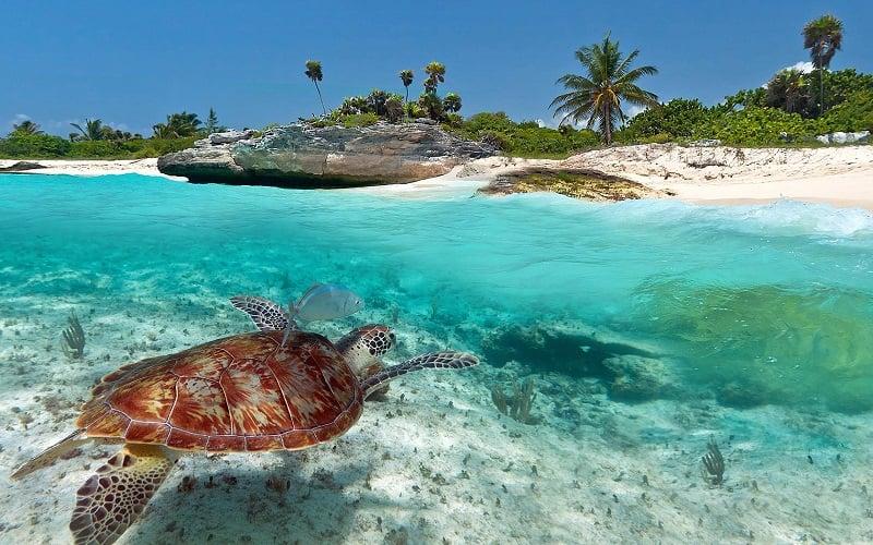 Onde Ficar na Riviera Maya: Playa del Carmen