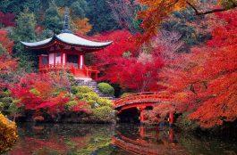 Onde Ficar em Kyoto