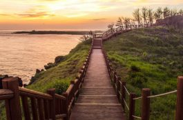 Onde Ficar em Ilha de Jeju na Coréia do Sul